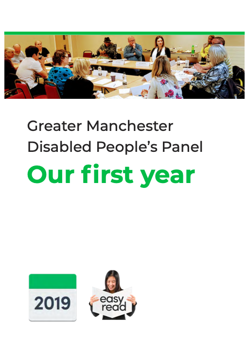 Cover of the Panel's Year One report showing image of disabled members at a meeting and text saying Easy Read.